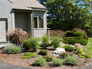 Photo courtesy of Catherine Conn Court / Landscape Gardens & Design