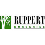 Logo: Ruppert
