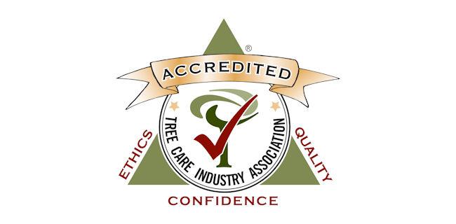logo: TCIA