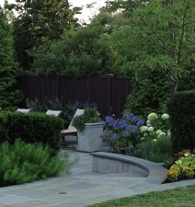 Nature's wall. Green Giant arborvitae screens the neighboring view. It's also a lovely backdrop to the cool-colored poolside plantings.