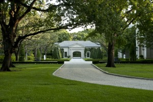 Dallas garden