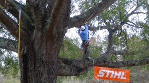 A student competes in the work climb competition at the TCIAF Student Career Days and Student Skills Competition. Photo: STIHL.