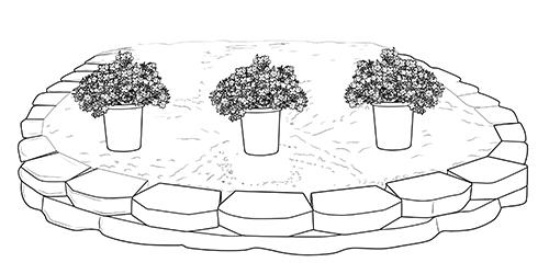 step_2_annuals