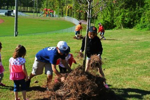 Small volunteers help renovate the XXX as part of Project EverGreen's 'Healthy Turf. Healthy Kids.' initiative. Photo: Project EverGreen