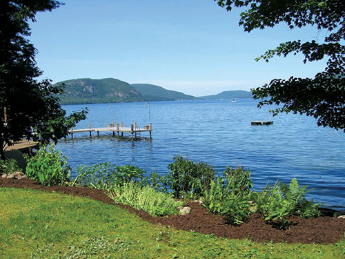 A native plant shoreline buffer along Lake George in New York. Photos: DeFranco Landscaping