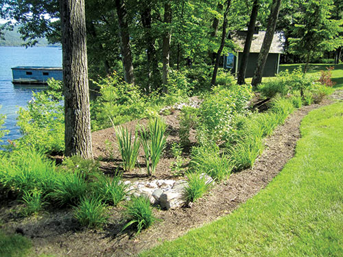 A DeFranco Landscaping rain garden overlooking Lake George. Photos: DeFranco Landscaping
