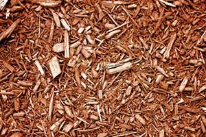 Mulch Image: PublicDomainPictures.net / Lilla Frerichs