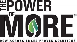 power_of_more