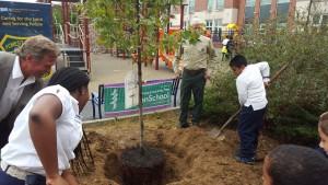 treeplant_usfs