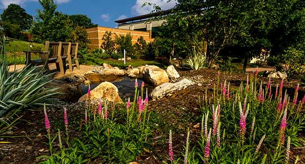 pond with landscape. Photo: Matrix Productions