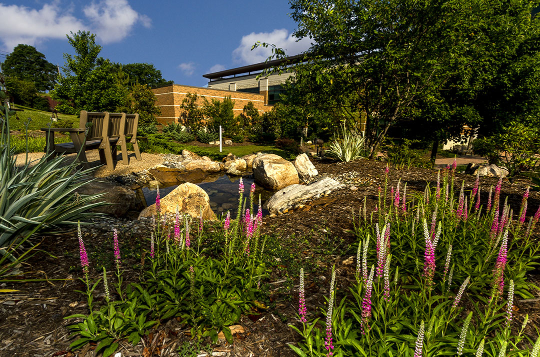 Completed pond and landscaping by Southern Landscape Group in Lynchburg, Va. Photo: Matrix Productions