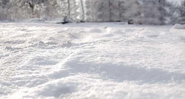 snow. Photo: iStock.com/KajaNi
