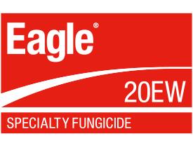 Eagle 20EW