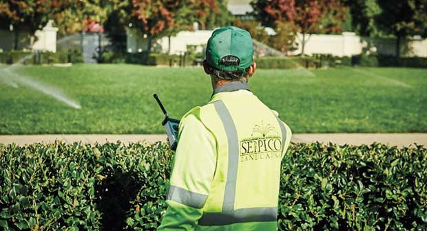 Crew member and sprinklers. Photo: Serpico Landscaping