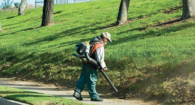 Man using backpack blower. Photo: iStock.com/MCCAIG