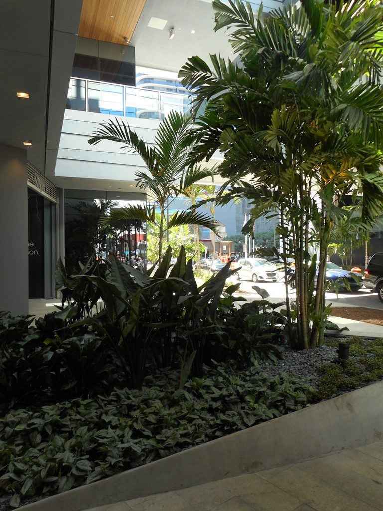 Main entry into mall (Photo: ArquitectonicaGEO)