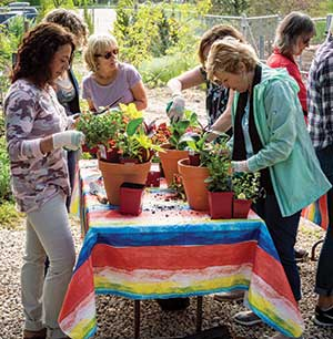 Potting partygoers learn about creating attractive containers. (Photo: James Martin Associates)