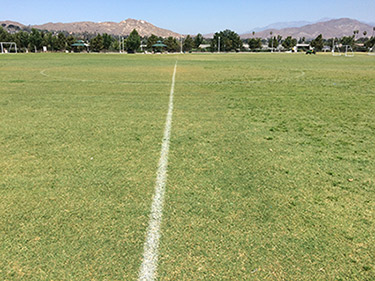 Bermudagrass in the early stages coming out of dormancy. The grass on the left was treated with Kerb, which has removed the unsightly clumps of Poa annua. The Bermudagrass is now able to green up and grow uninhibited from the competition of Poa annua clumps and sporadic growth that is occurring on the right of the Kerb treated area. The left side was treated with Kerb on Nov. 20, 2017 and the photo was taken six months after the application. (Photo: Gil Del Rosario, Corteva Agriscience™, Agriculture Division of Dow DuPont)
