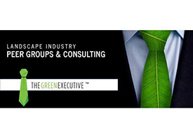 Logo: The Green Executive.