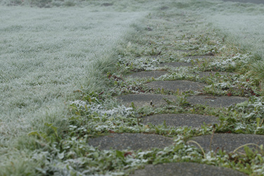 Sidewalk covered with frost. (Photo: iStock.com/Piepereit)