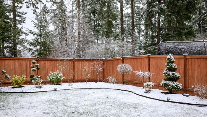 Snowy yard. (Photo: iStock.com/Gerardo Martinez Cons)