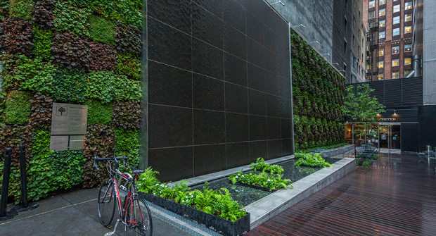 Green wall, Manhattan (Photo: John Mini Distinctive Landscapes)