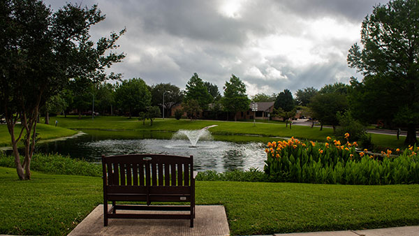 Pond area at Blue Skies of Texas (Photo: Clean Scapes)