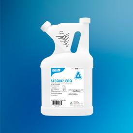 Quali-Pro Strobe Pro (Photo: Quali-Pro)