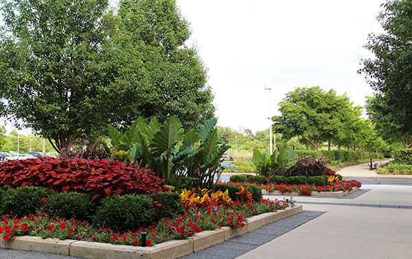 Seasonal plantings at Kemper Lakes (Photo: Gayle Kruckenburg and Bryland Photography)