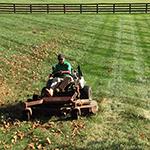 Photo: Al's Complete Lawn Care