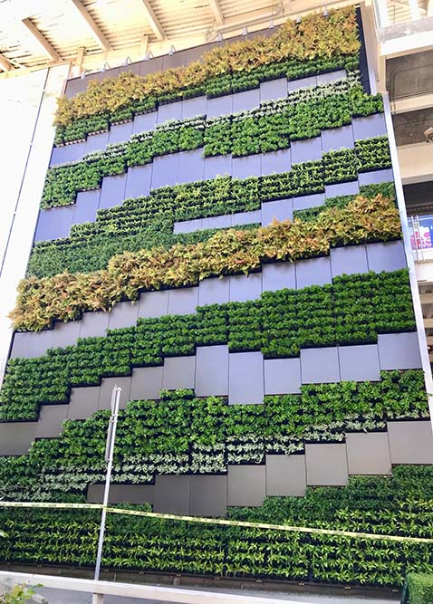 A GSky Living Wall at Vancouver International Airport, Vancouver, BC. | (Photo: GSky)