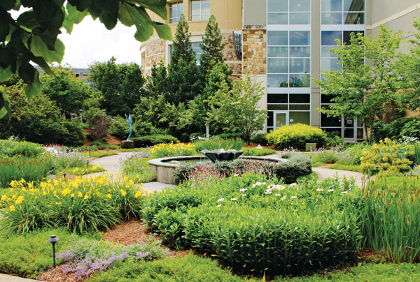 Photo: The Fockele Garden Co.