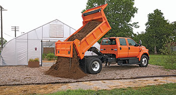 Chassis cab (Photo: Ford)