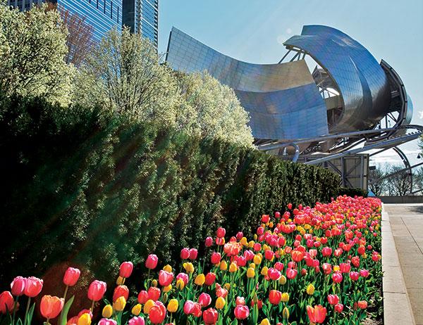 Millennium Park (Photo: Scott Stewart, Millennium Park Foundation)