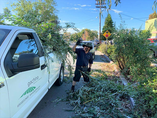 Gachina employees help with a cleanup in Menlo Park, Calif. (Photo: Gachina Landscape Management)