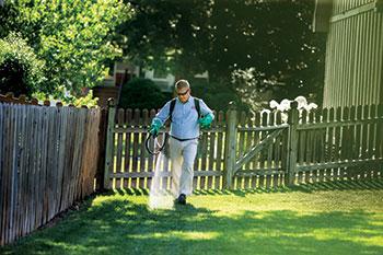 Man spraying lawn (Photo: Bayer)