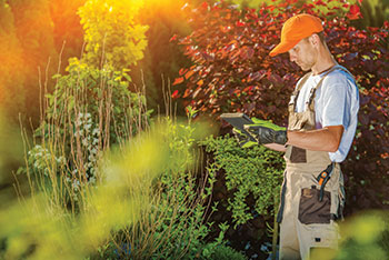 Landscaper using software app. (Photo: iStock.com/welcomia)