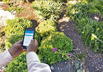 Irrigation app (Photo: Gachina Landscape Management)