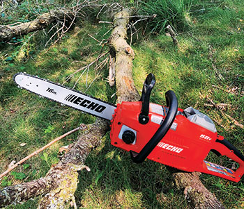 Battery-powered chainsaw (Photo: Bedell Property Management)