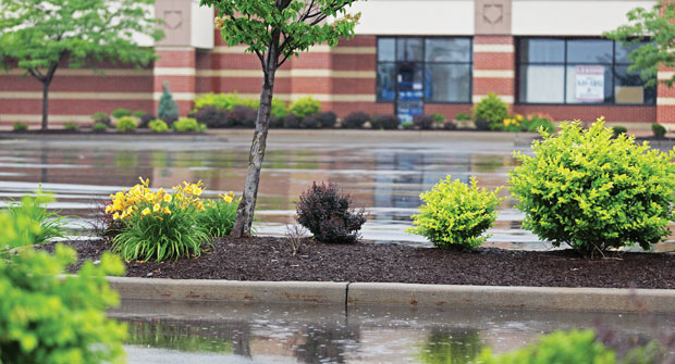 A wet spring in many parts of the country hindered some landscape companies. (Photo: Willowpix/iStock / Getty Images Plus/Getty Images)