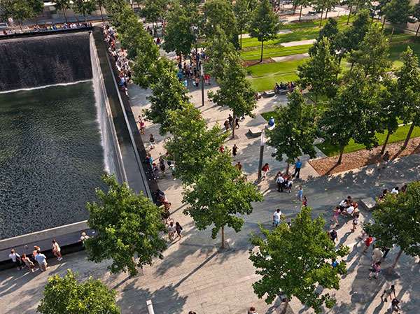 Landscaping at 9/11 Memorial (Photo courtesy of PWP Landscape Architecture)