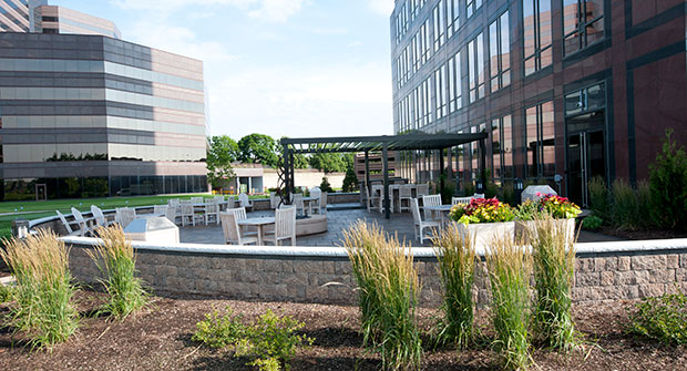 Design/build project by CP Hort (Photo: Cornerstone Partners Horticultural Services)