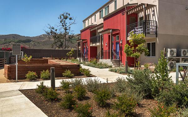 Irrigation project in housing development. (Photo: Pacific Coast Land Design)