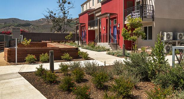 Irrigation project in housing development. (Photos: Pacific Coast Land Design)