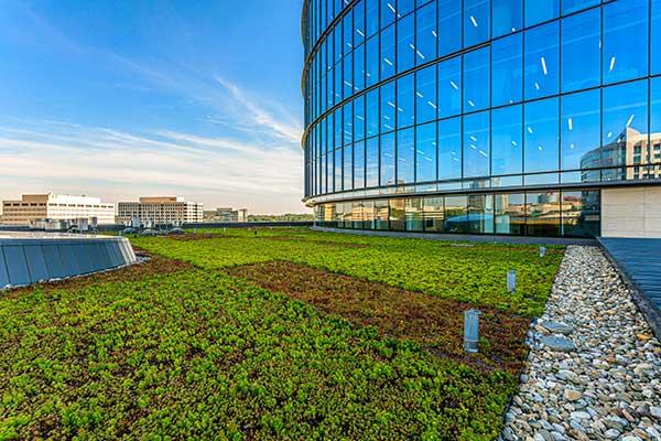 Landscape maintenance project (Photo: Ruppert Landscape)