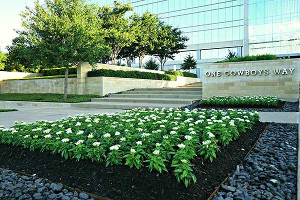 Landscape maintenance project (Photo: Superscapes)