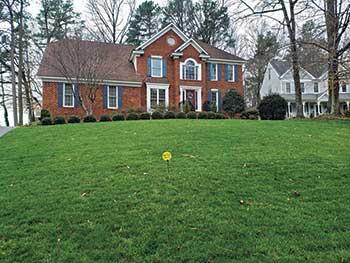 Lawn in Virginia (Photo: Virginia Green Lawn Care)