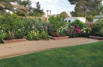 Fertigated landscape beds (Photo: VIP Landscaping)