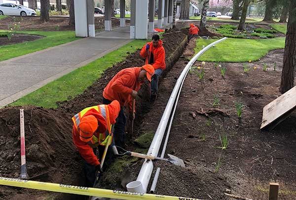 Irrigation project at corporate headquarters (Photo: Pacific Landscape Management)