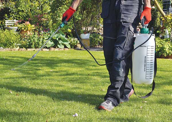 Person spraying lawn care application (Photo: Imagesines/iStock / Getty Images Plus/Getty Images)